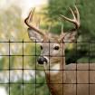 Tenax C-Flex Deer Control Utility Fence 8' X 165' Black 1A120530